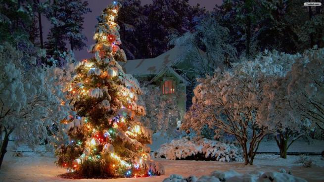 winter_wonderland_christmas_tree_winter_christmas_tree_wallpaper_x__christmas_wallpaper